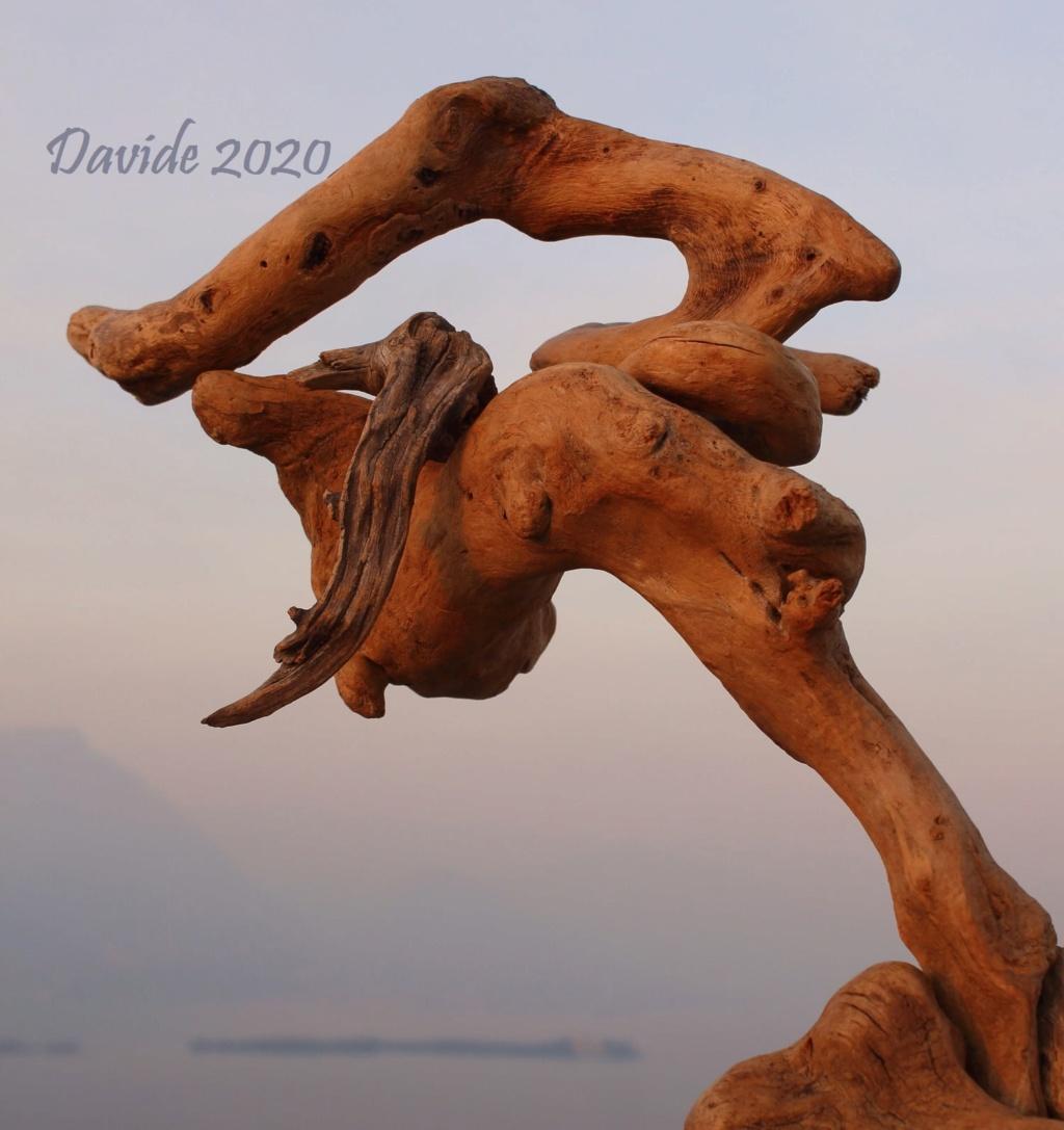 FORME SFUGGENTI 50 – ROCCA DI MANERBA (Manerba del Garda, 7-8 febbraio 2020) Img_9510