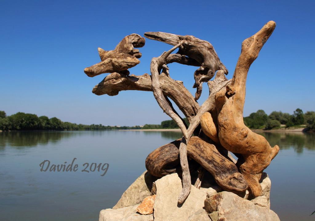 FORME SFUGGENTI 29 - BOCCA DELL'ADDA (Castelnuovo Bocca d'Adda, 1-2 giugno 2019) Img_9610