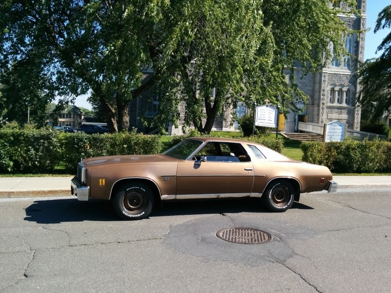 Owner of a 1976 Malibu Classic in Quebec, Canada Img_2019