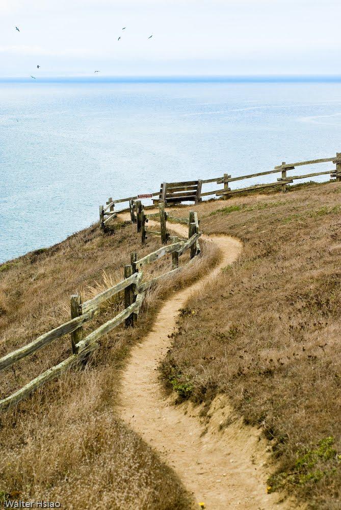 Chimney Rock, Point Reyes, Comté de Marin, Californie, États-Unis 47064412