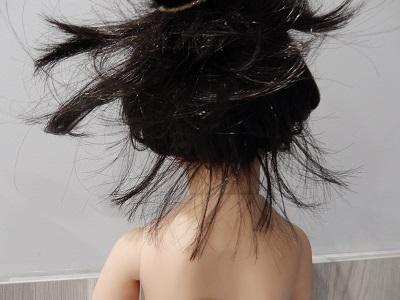 cheveux de Maru Dscn1520