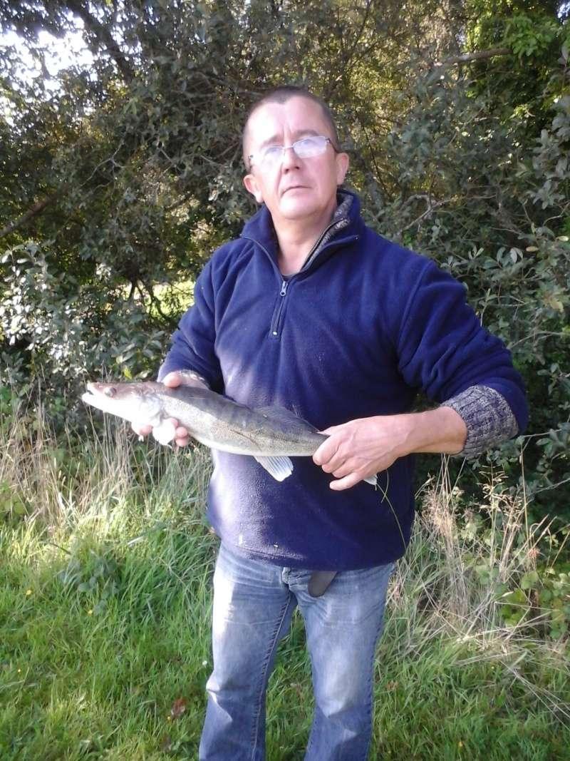 pêche a langonnet  ils sont fous les sandres 20150911