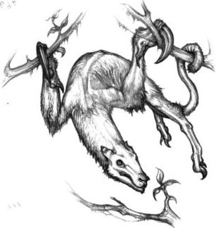 >> Forêt des Rêves << // Partie de chasse (Avec Aedon, Mara, Shad ?)  Slothe10