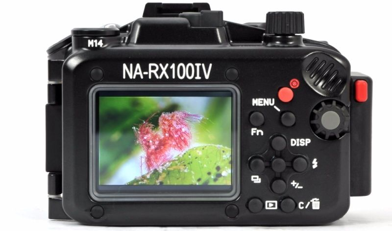 I bought a new camera for diving Nautic10