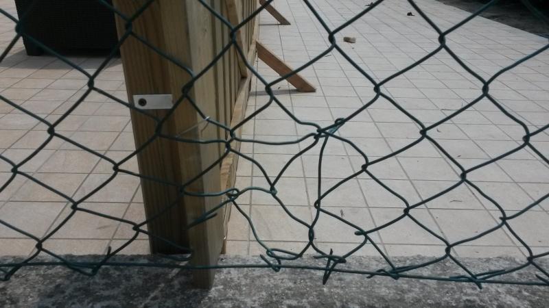 Aiuto-recinzione-piante. 20150612