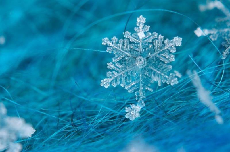 Winterly Mirkwood Water_10