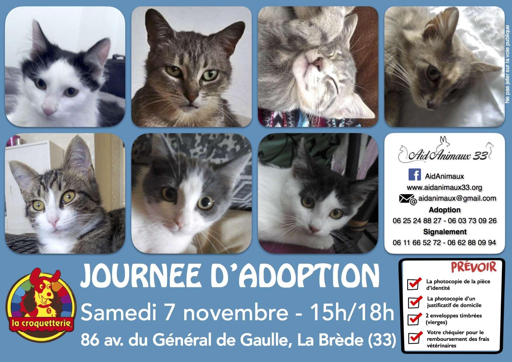 JA du Samedi 7 novembre 2015 - La Brède Ja_20113