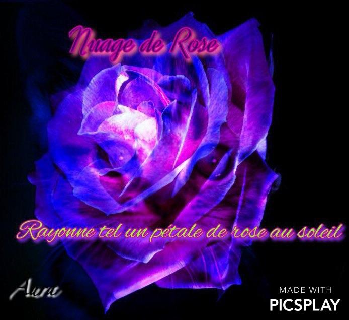 Une rose à dix pétales - Page 4 Image27