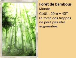 Liste des cartes Illusion Foryt_11
