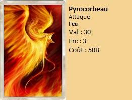 Zone de duel Illusion Pyroco11