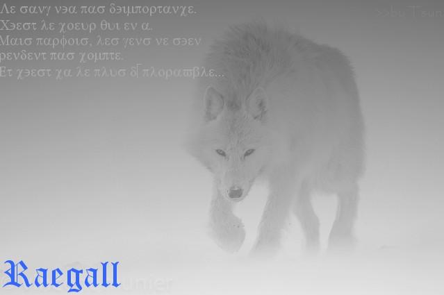 Boutique spéciale scénario n°19 Raegal10