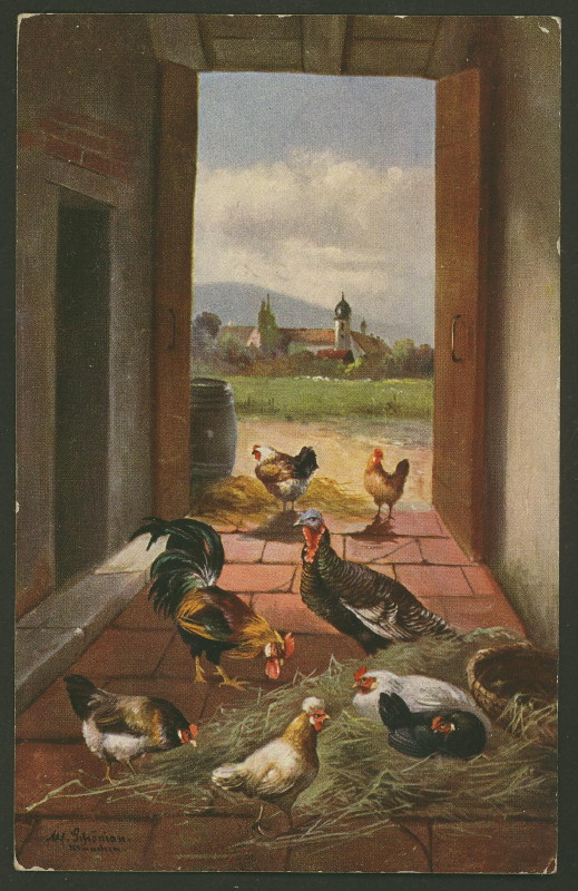 Federvieh auf dem Bauernhof 0310