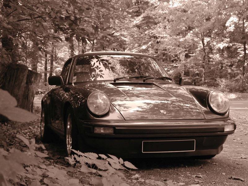 Porsche en automne Photo_10