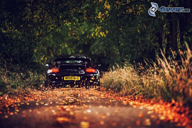 Porsche en automne Porsch12