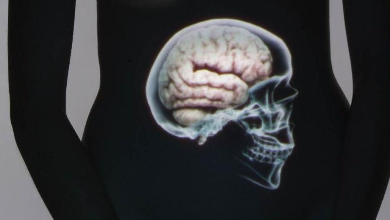 Voici un article sur le ventre, notre deuxième cerveau 04869610