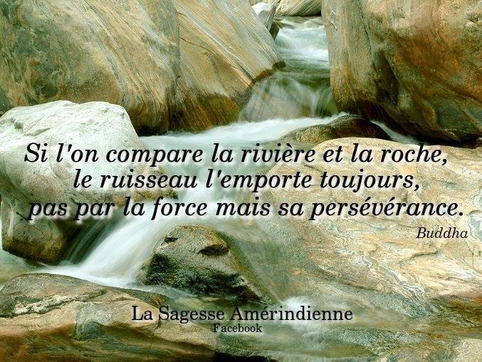 Citations que nous aimons - Page 2 10888310