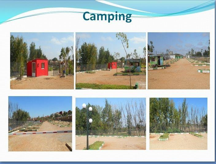 Présentation de Camping-Parc Oued Boufekrane 710