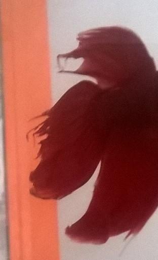 Mon curieux Red dans son 15L Wp_20117