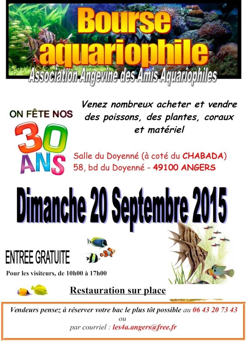 Bourse aux poissons le 20 septembre 2015 - Angers (49)  Bourse10