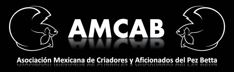 Asociación Mexicana de Criadores y Aficionados del Pez Betta Portad26