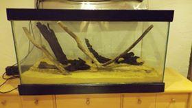 mis à eau aquarium 250l 12002210
