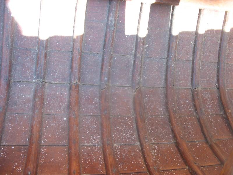 Nouveau venu qui se lance dans la rénovation d'un canoe DE SAEVER Img_8214