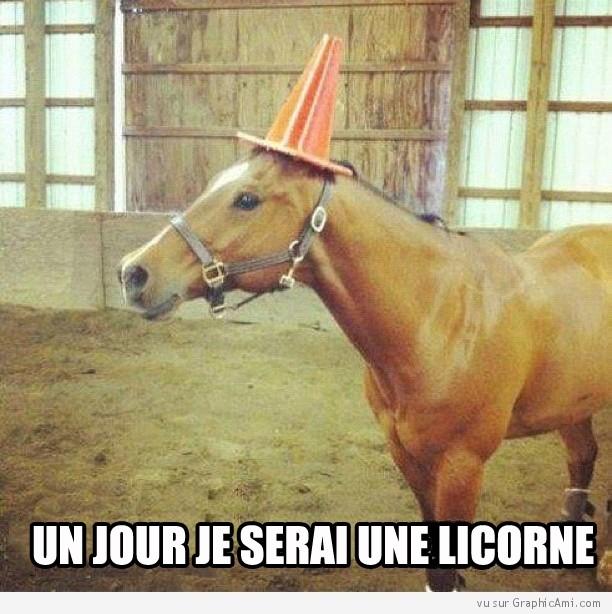 Topic des licornes Cheval10