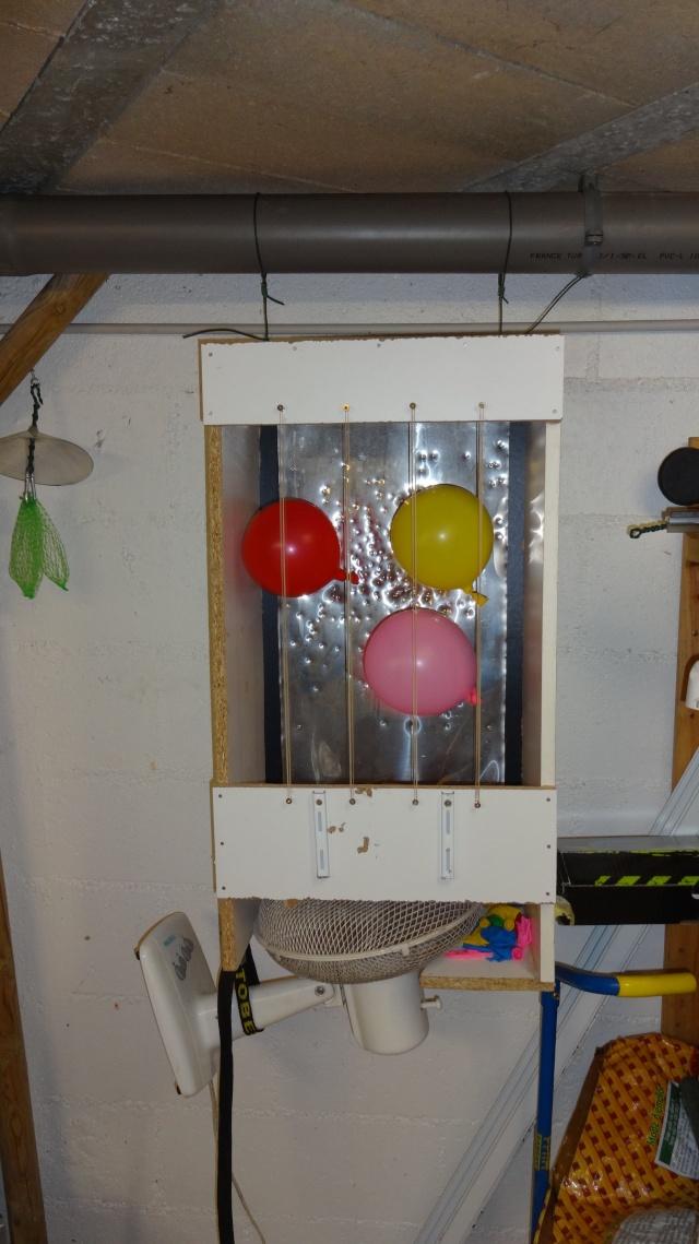 Tir au ballon maison Dsc02414