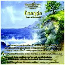 Retour de stage, programme Excursion, en langue française, niveau 2.  Energi11