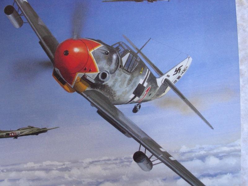 FW190 A5 au 1/48 de Dragon par pascal 72 - Page 2 Img_0611