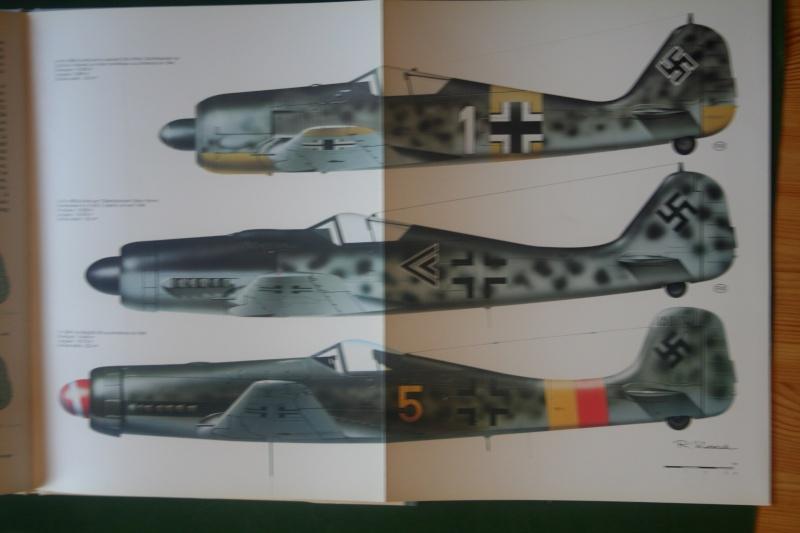 FW190 A5 au 1/48 de Dragon par pascal 72 - Page 2 Img_5539
