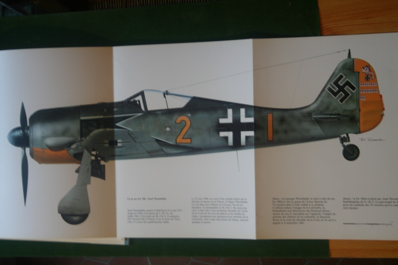 FW190 A5 au 1/48 de Dragon par pascal 72 - Page 2 Img_5540