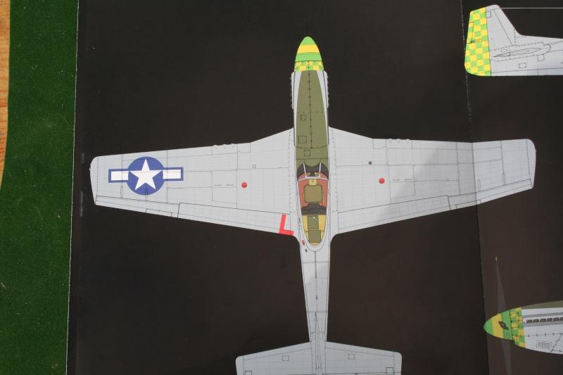Un avion américain avec un moteur anglais le P 51 par JJ Img_5621