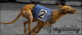 Happy Birthday mountain4greys Greyho10