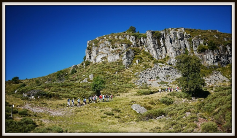 Balades dans le Cantal P1080213