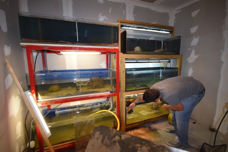 installation fishroom  Dsc_0711