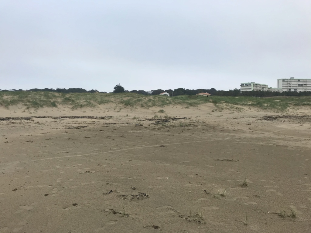 Pour les amoureux du sable 134e6810