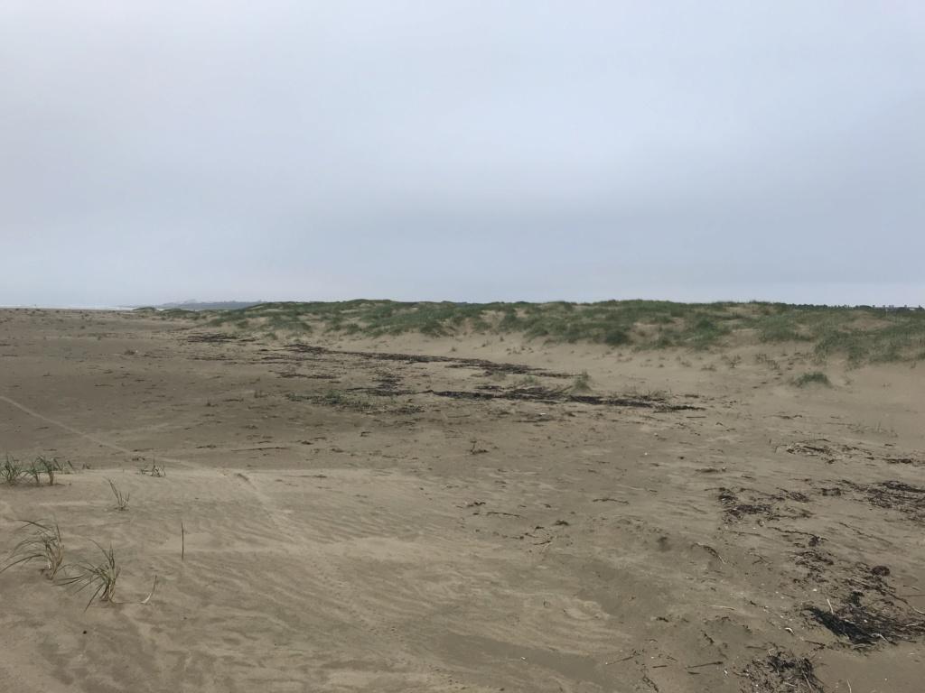 Pour les amoureux du sable A9557610