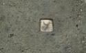Rectangular Agano-ish plate Img_1312