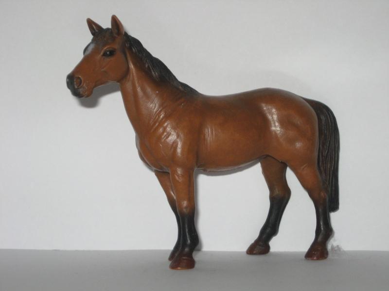 My schleich collection (Horses) Scheli15