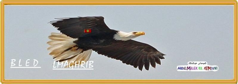 Блад (Blad)  Марокко сайт Марокко Магриба Bled_l10