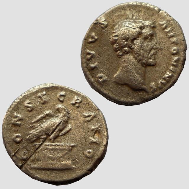 Doutes d'authenticité sur les monnaies eBay MEGATHREAD Anto210