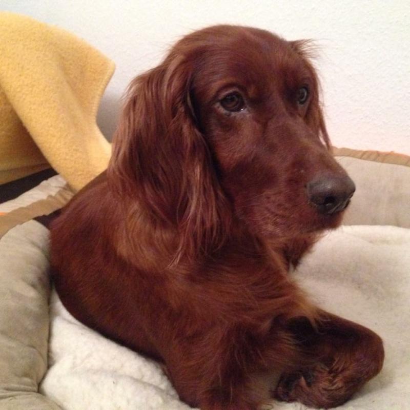 Nachricht von Abby ( Lilli ) Image24