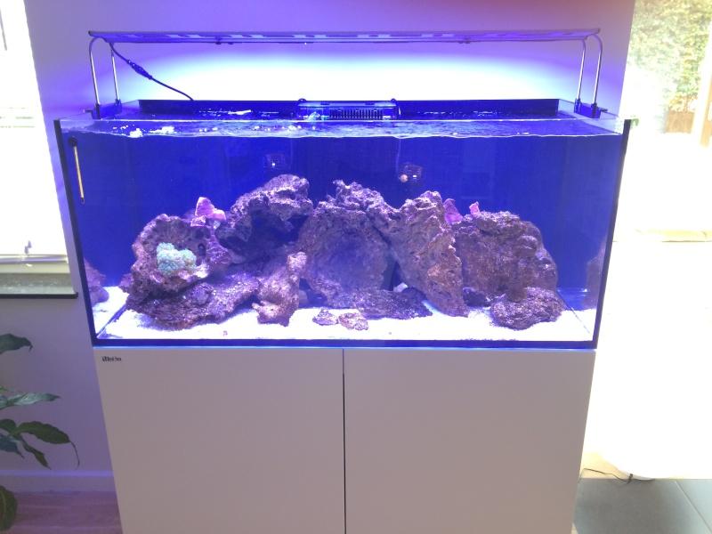 RedSea Reefer 350 Blanc Img_6310