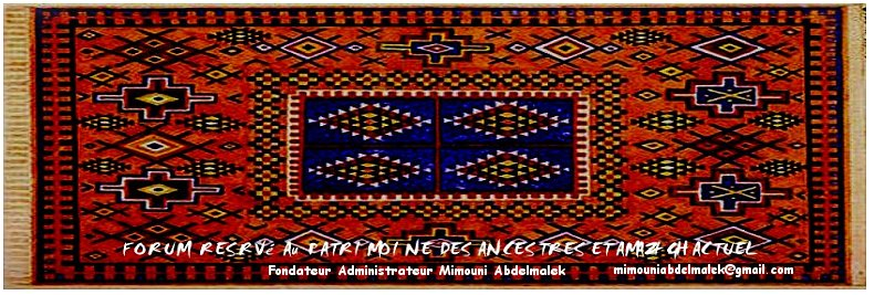 L'oeuvre Artisanale berbere , le tapis de Taznaghte Mimoun12