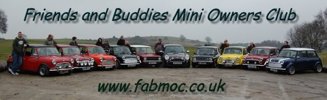 FRIENDS AND BUDDIES MINI OWNERS