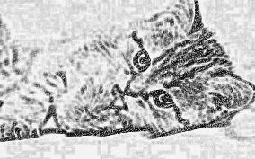 Description + Cat = Game! - Page 2 20151011