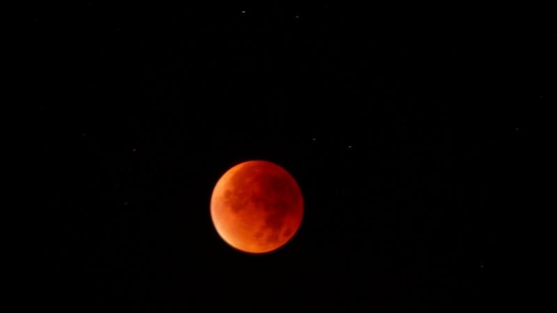 Eclipse totale de Lune - 28 septembre 2015 P1110012