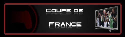 Fifa-Tournois La communauté FIFA 16 sur PS4 Coupe_10
