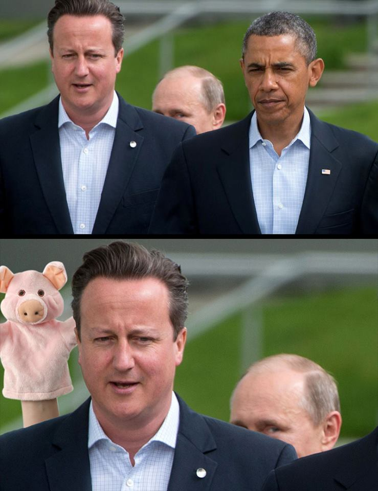 My Damascus moment Piggy10